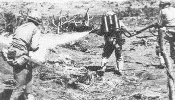 二战时日本最怕的一个国家,烧死日本兵,处决战犯,还要审判天皇图片