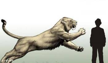 史上最大的猫科动物,名字也很残暴霸气图片