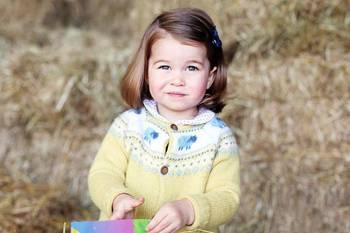 英皇室公开夏洛特小公主两岁官方照片:呆萌可爱