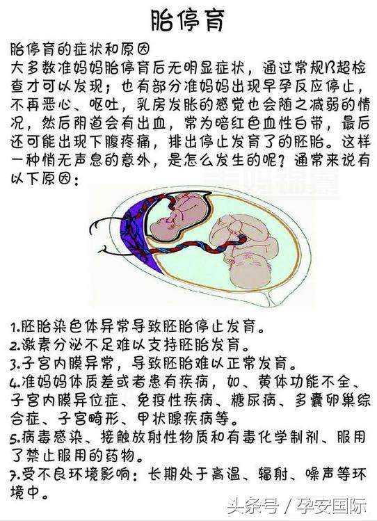 孕吐其实是胎停育吗?孕吐反应突然减弱,好怕是胎停,怎么办