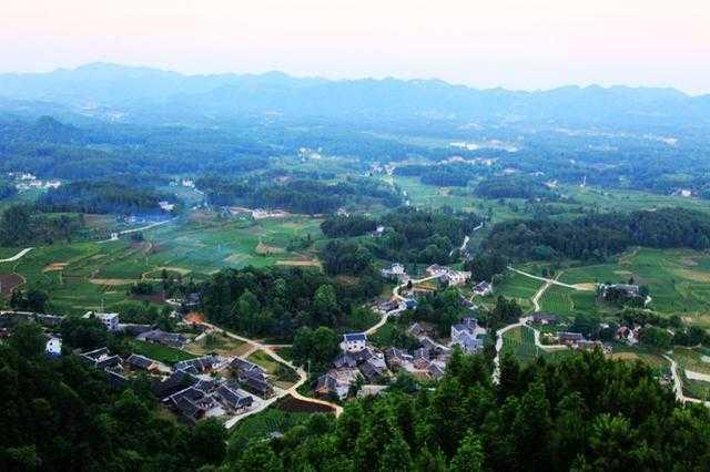贵州省遵义市凤冈县永安镇田坝村茶海之心景区茶园里的游客.