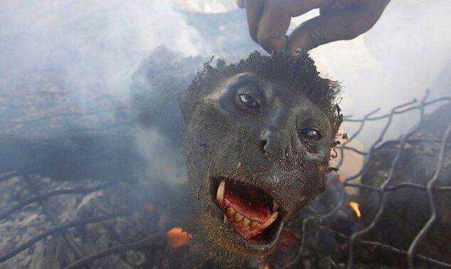 这是一个猴子头,是非洲人最爱的烧烤食材之一.图片