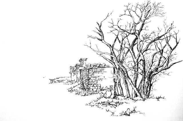 零基礎學習速寫風景--樹的畫法二(村頭步驟圖)