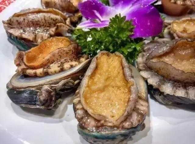108元海鲜火锅疯狂来袭,鲜活鲍鱼,精品大虾,挑战你的味蕾!