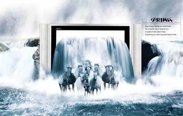 黄雨水 生态位与感知符号:新媒介生态下电视广告的传播优势