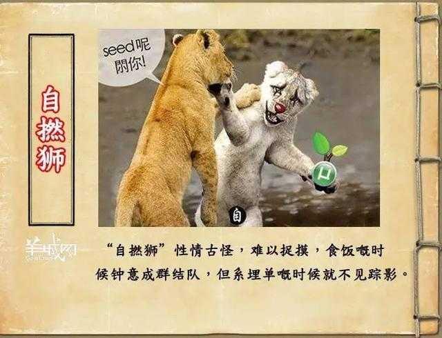 如果jk罗琳系广州人,《神奇动物在哪里》至少出7集!