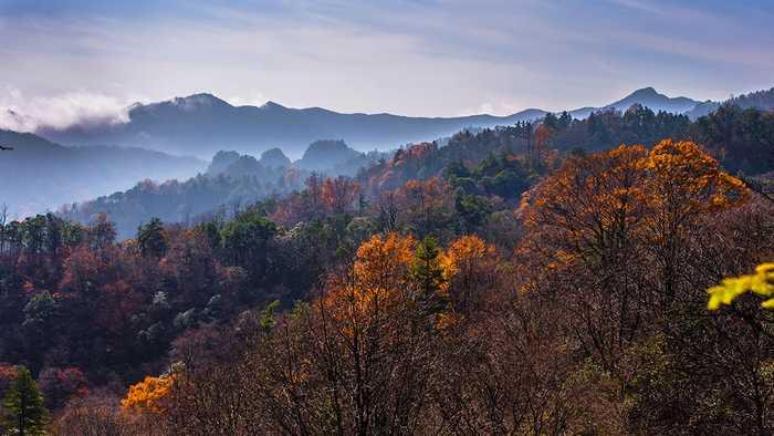 光雾山的秋色一步一景,大自然的美尽在你眼里中