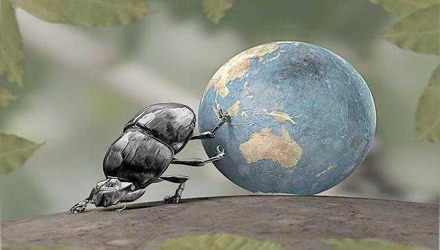 蚂蚁森林1g等于多少步图片