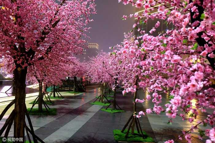在桃林间还设置了小桥,廊亭,林荫小道,让人仿佛从冬天穿越到春天.图片