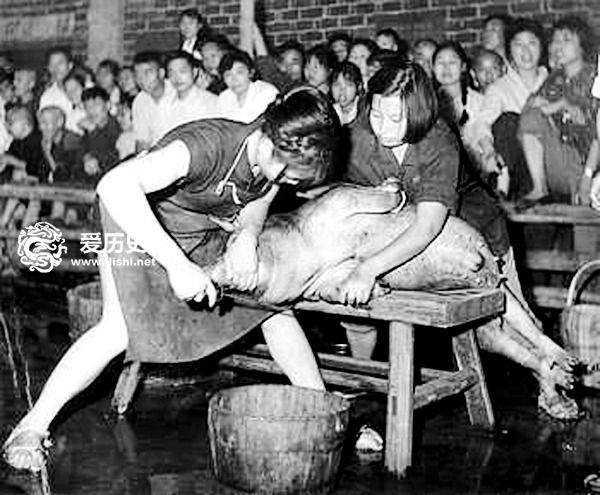 狂热年代为证明男女都一样 女人拿起了杀猪刀