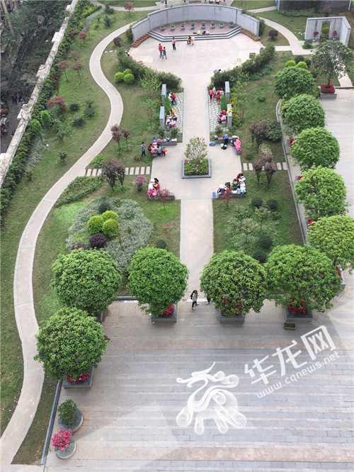 渝中区推出社会绿化奖励办法 建屋顶花园最高奖励260元/㎡图片