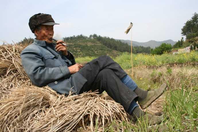 农村大奶草垛性爱_农村大爷在野外稻草垛子上悠闲的吸着烟斗,大爷这是在野外放鹅呢,大爷