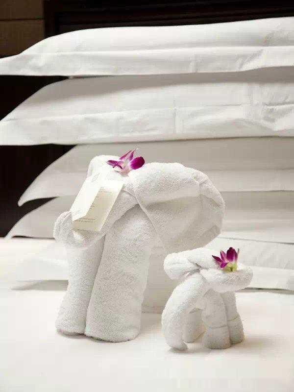 揭秘酒店毛巾折叠成小动物的全过程!教程都在这里了!