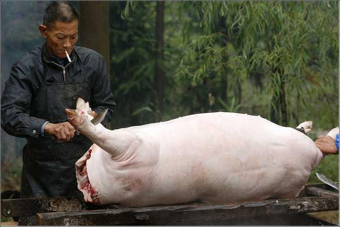 屠夫_屠夫娴熟的切割猪肉,一看就是个老司机