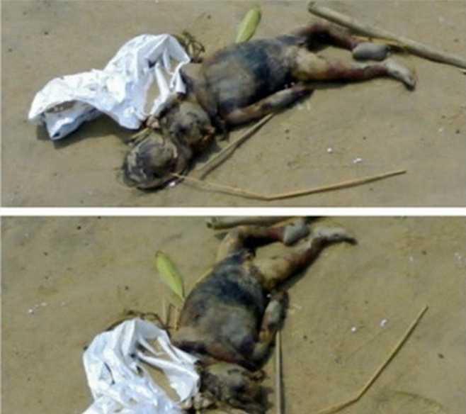 广东水库抓到一只女鬼竟是美人鱼 而不是水猴子?