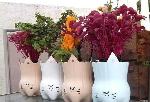 朋友用塑料瓶制作的花盆,花友给上百元都不肯卖!