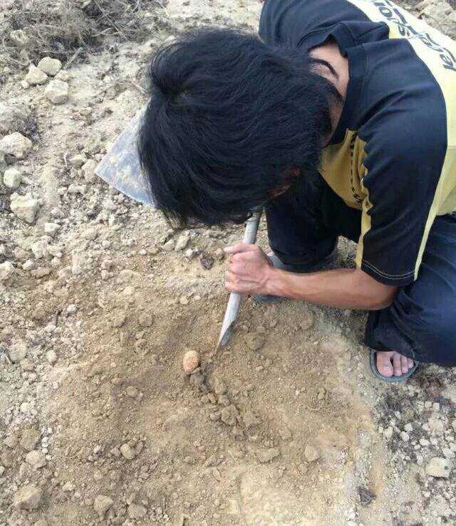 搁地上挖一个浅坑,然后搭土坷垃.