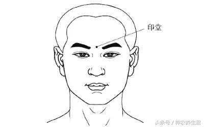 生活 文章详情  印堂,即我们的额头,位于两眉之间,也称为命宫.图片