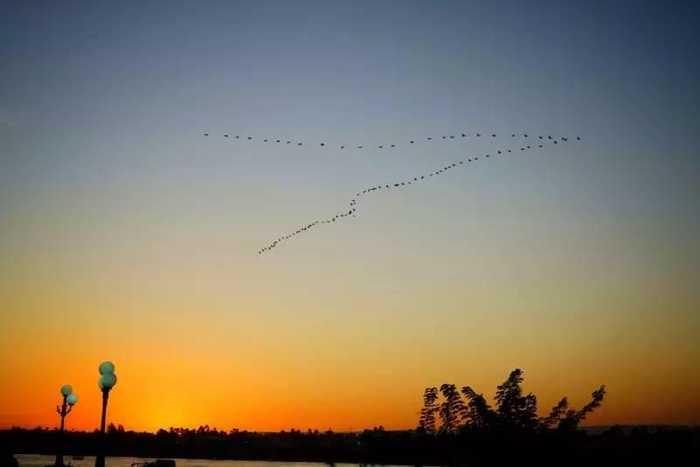 在尼罗河畔等待美丽的夕阳