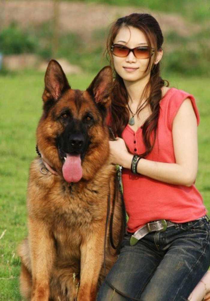 女子与狗交配拔不出_女子与狗交配被卡住两天拔不出打120求救!