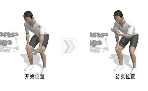 肱二头肌锻炼方法之半蹲单臂哑铃弯举图片