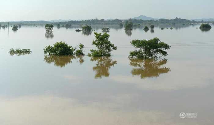 江西一河堤溃口民居被淹 万人连夜转移