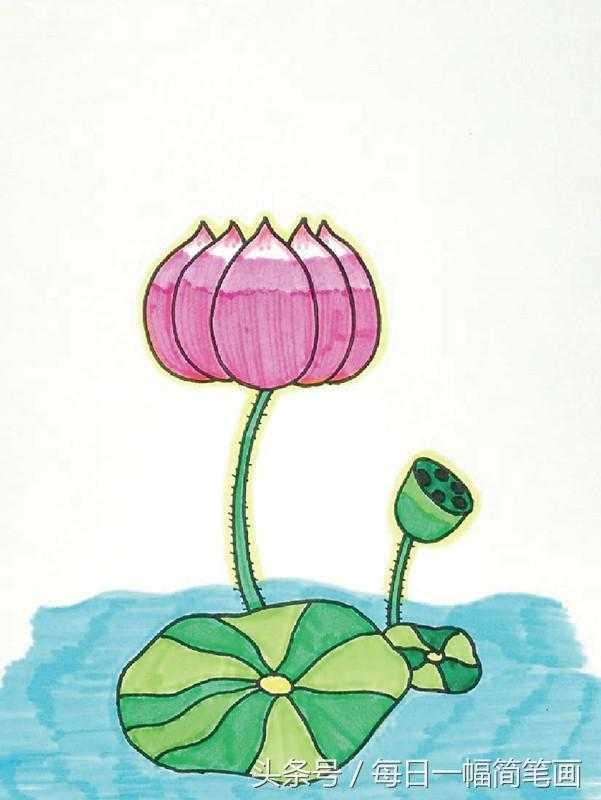 简小学:六步画好一朵荷花?(小朋友也学的)笔画优质的课视频体育图片