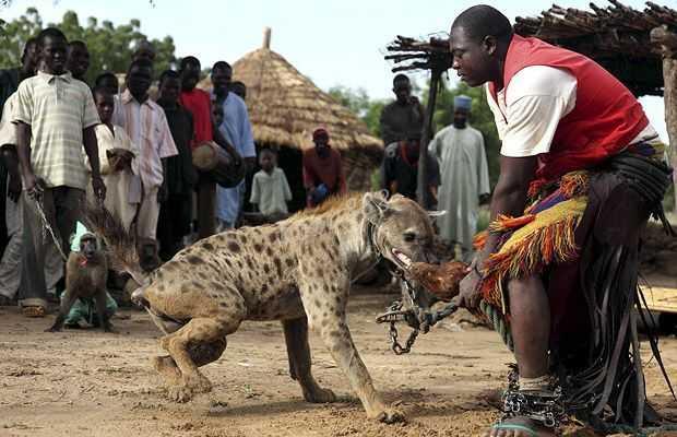 非洲人养\