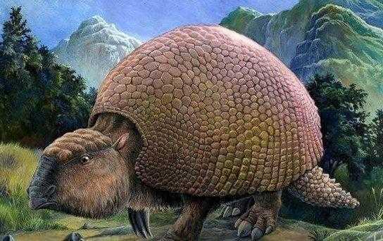 体型庞大的装甲哺乳动物