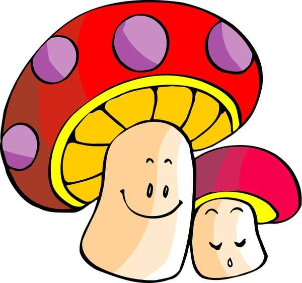 联合国粮农组织更是将蘑菇纳入人类最佳饮食结构——,冬季进补,少不了