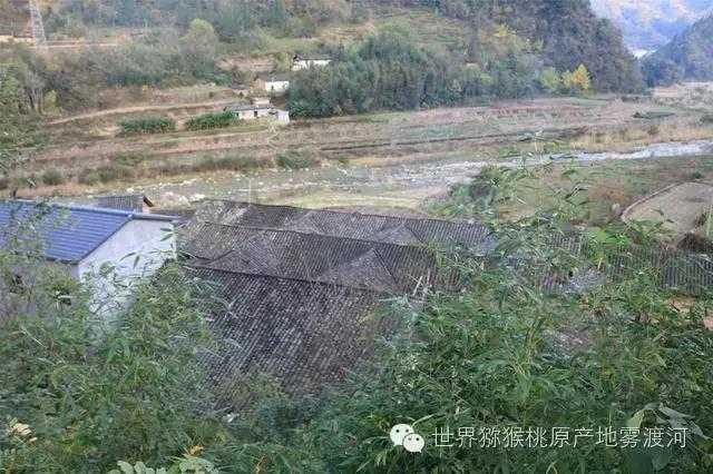 湖北宜昌:隐匿于雾渡河的历史建筑