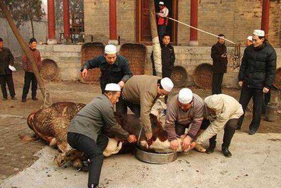 回族为什么不吃猪肉,仅仅只是因为信仰伊斯兰教吗?
