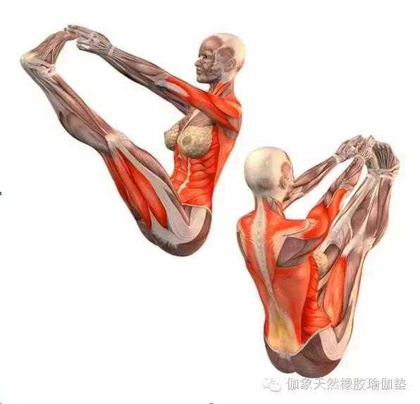 20个收藏级高级瑜伽体式拿走!图片