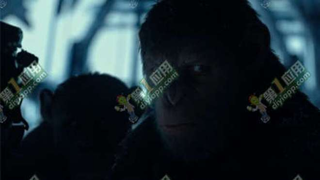 猩球崛起3百度云盘资源 猩球崛起3百度云网盘1080p中文字幕图片